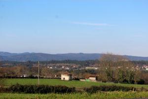 Vista del prado
