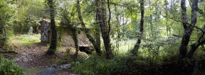 Muíño no río Santa Lucía ao pe do castro de Vixoi