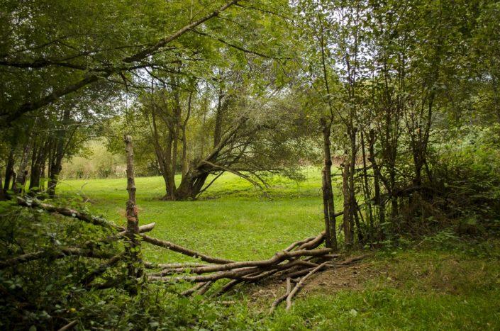Prados por la Barranqueira de Peirás en el entorno del riego de los Ballotes afluente del Santa Lucía